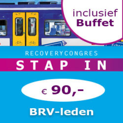 Ticket BRV-leden+buffet